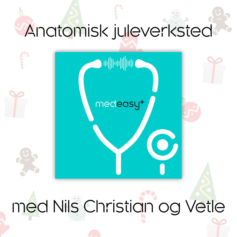 Anatomisk juleverksted med Nils Christian og Vetle