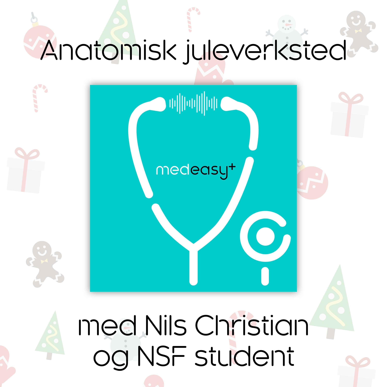 Anatomisk juleverksted med Nils Christian og NSF student