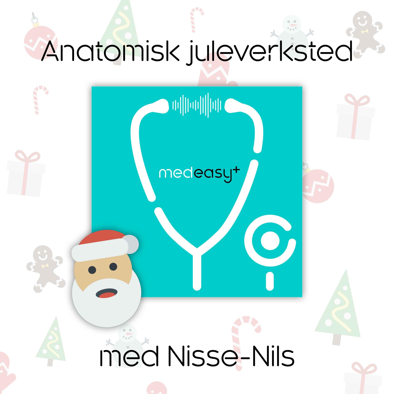 Anatomisk juleverksted med Nisse-Nils