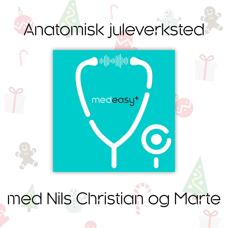 Anatomisk juleverksted med Nils Christian og Marte