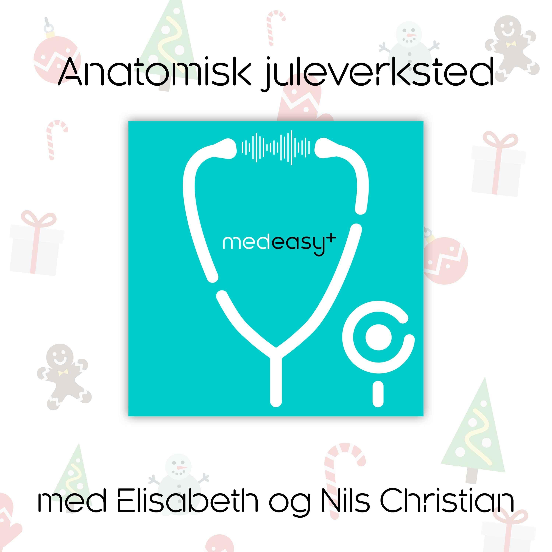 Anatomisk juleverksted med Elisabeth og Nils Christian