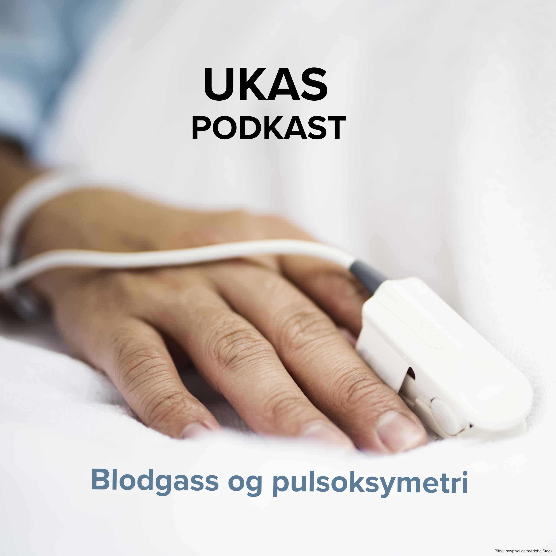 Blodgass og pulsoksymeter