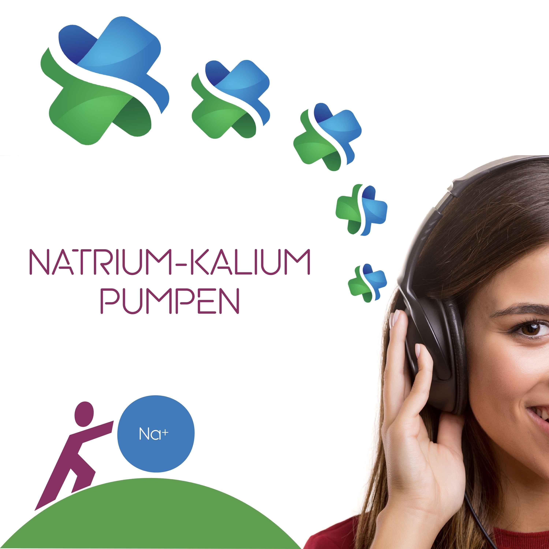Natrium-kalium-pumpen