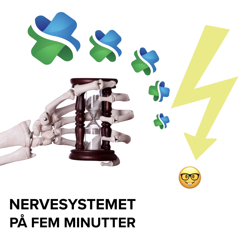 Nervesystemet på fem minutter